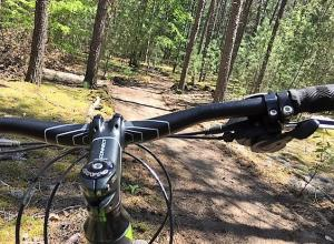 Mountain Bike on the County Forest Trail